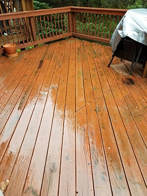 A person wondering How Long Should Deck Stain Dry Before Walking On It